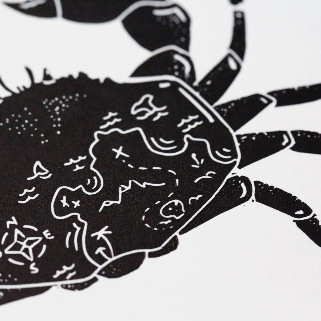 detail crabe